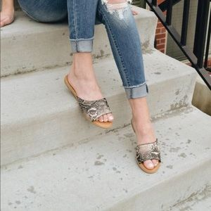 Shoes - 💕STUNNING SNAKE PRINT SLIDES FLATS- Sandals